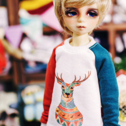 MSD An Antler MTM - Bluish Green & Orange