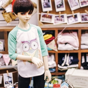 SD17 Boy Owl T shirt - Mint