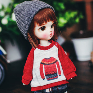 Raglan Sweater Print MTM - Red